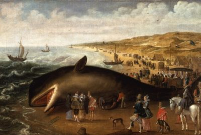 Gestrandeten Wale